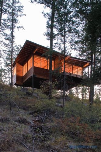Cottage in a pine forest on a hillside in Montana