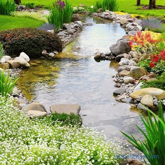 5 interesting ideas for a country landscape