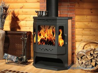 Stoves fireplaces wood for a country house, prices in Moscow, description, how to choose, photo