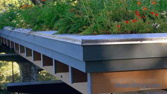 reasons for the popularity of high-rise gardens, types of roof gardens