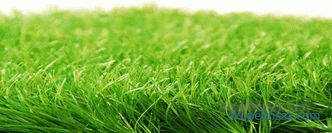 Artificial grass - buy artificial turf in rolls, the price of coverage in Moscow