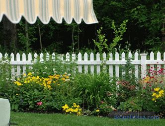 Flowerbed along the fence: the rules of landscape design
