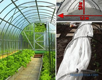 Home mini polycarbonate greenhouse, mini greenhouse for garden, photo and video