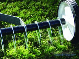 Lawn scarifier - how to choose