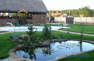 sauna, garage, well, pool, sandpit, swing, or house for guests, staff, winter garden