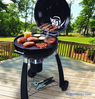 Gas grill for dachas, popular varieties and their advantages