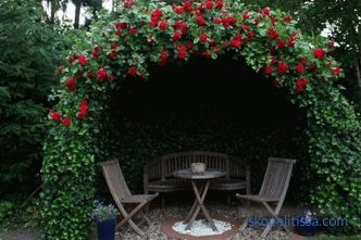 Beautiful gazebos for summer cottage - photos of the best garden garden design ideas