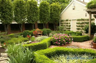 Landscape design of a small area, beautiful ideas, basic rules, photo options
