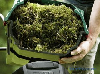 What better buy vertikuttery - electric and gasoline, lawn aerators, how to choose