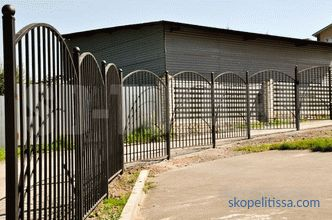 Metal fences and fences: variety, cost, choice, installation