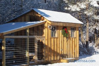 Warm chicken coop for the winter, what type of building to choose, what to consider when building
