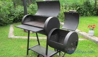Brazier with smokehouse, metal and brick construction, types and features of models